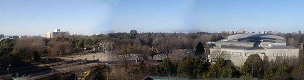 光が丘公園パノラマ2.jpg