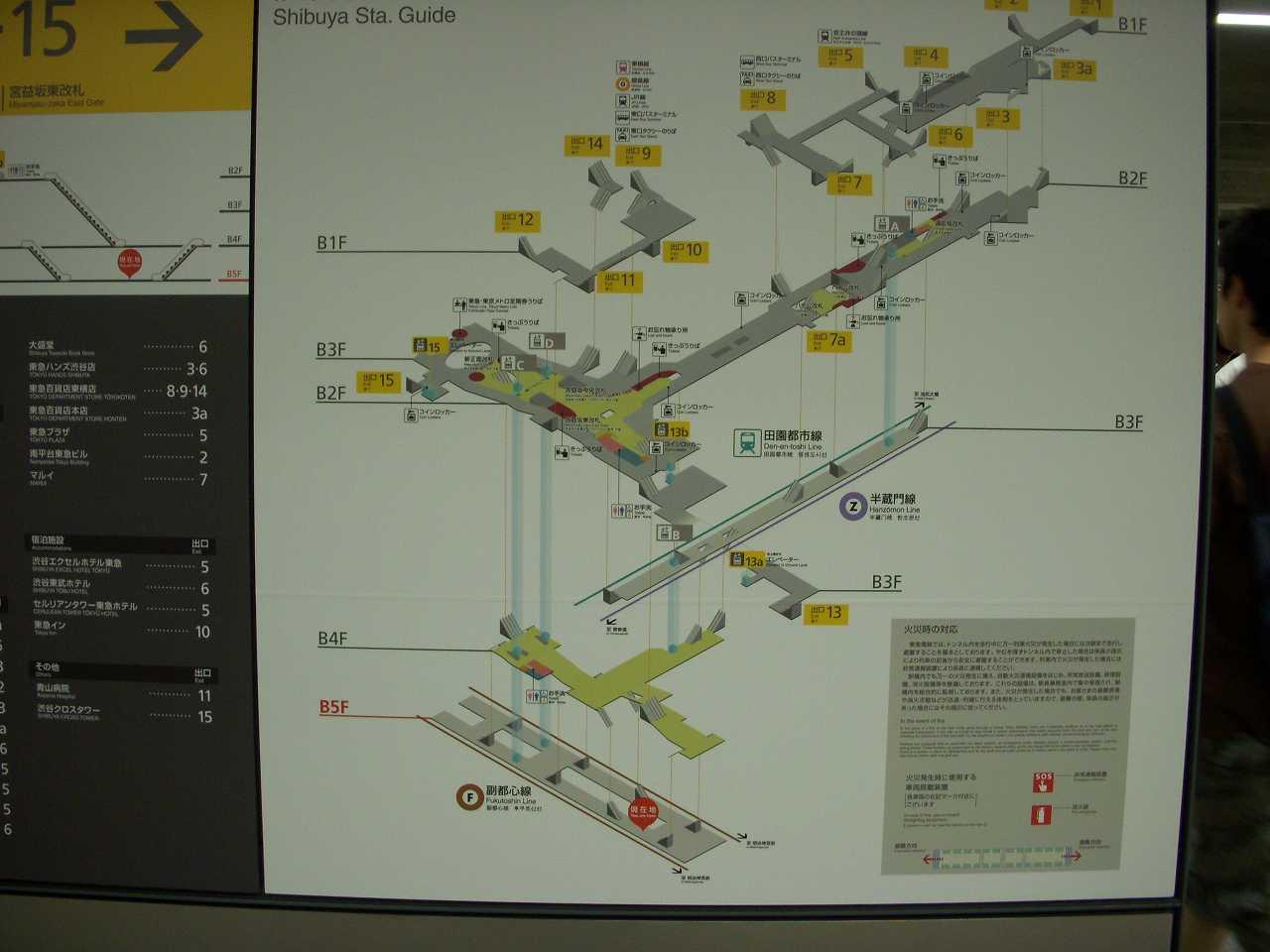 渋谷のホーム図